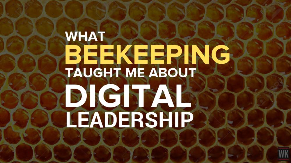 Blog - What Beekeeping Taught Me About Digital Leadership
